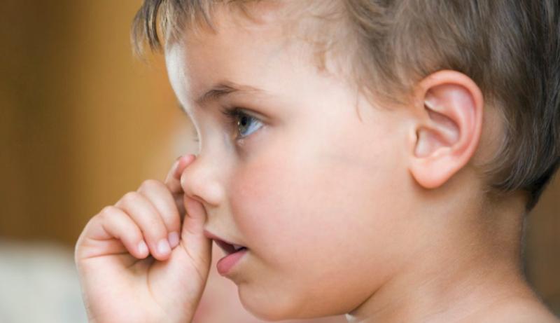 E pabesueshme: Mjekët thonë se ngrënia e qyrrave është e shëndetshme